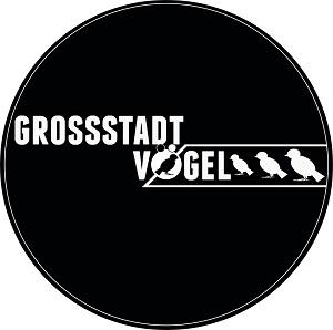 LogoGSV